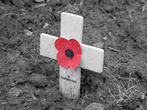 Poppy_cross